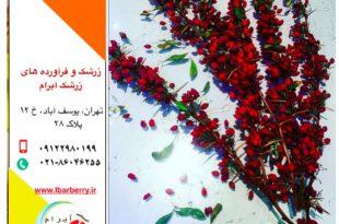قیمت زرشک - ۲۰ مهرماه - ۱۲ اکتبر